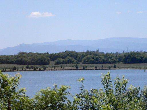 225 Rock Point -Lot 426 Drive, Vonore, TN 37885 (#1105460) :: Shannon Foster Boline Group