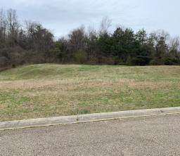 145 Rock Bridge Greens Blvd, Oak Ridge, TN 37830 (#1109805) :: Cindy Kraus Group   Realty Executives Associates