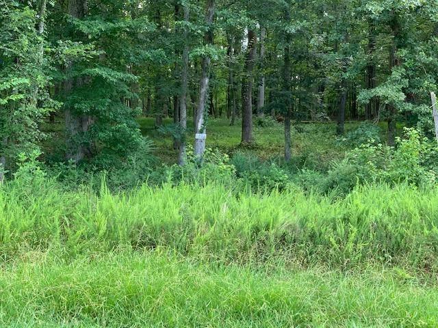 E Shore Drive, Rockwood, TN 37854 (#1122234) :: Venture Real Estate Services, Inc.