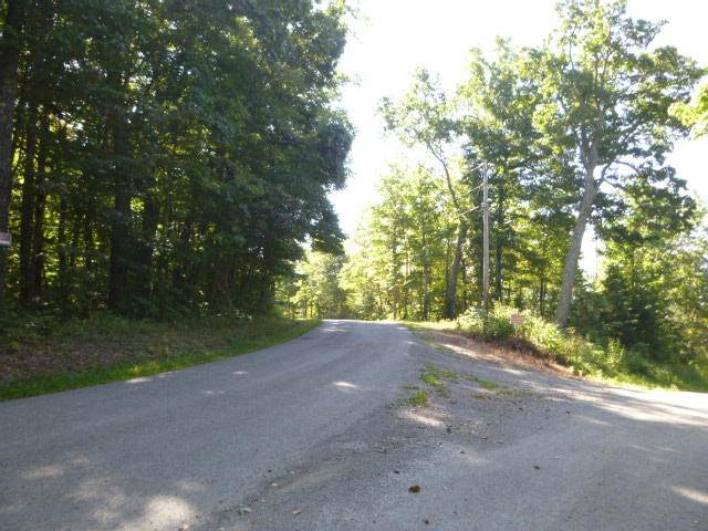 28 Lots On Bankston Lane, LaFollette, TN 37766 (#1125599) :: Catrina Foster Group