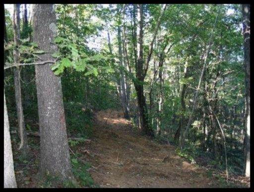 Tract 2 Jd Lee Farm Rd, Tellico Plains, TN 37385 (#1133973) :: Tennessee Elite Realty