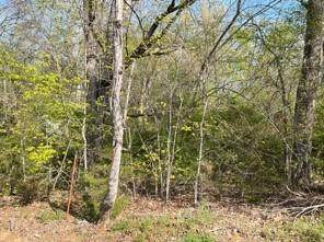 lot 12 Flatwood Rd, Sevierville, TN 37862 (#1141379) :: A+ Team
