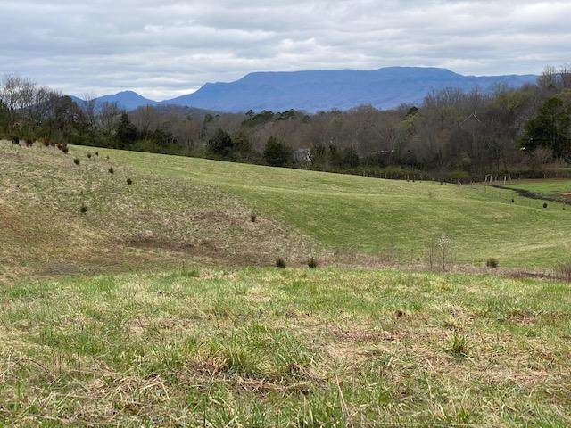 Farm Rd, Newport, TN 37821 (#1145184) :: Billy Houston Group