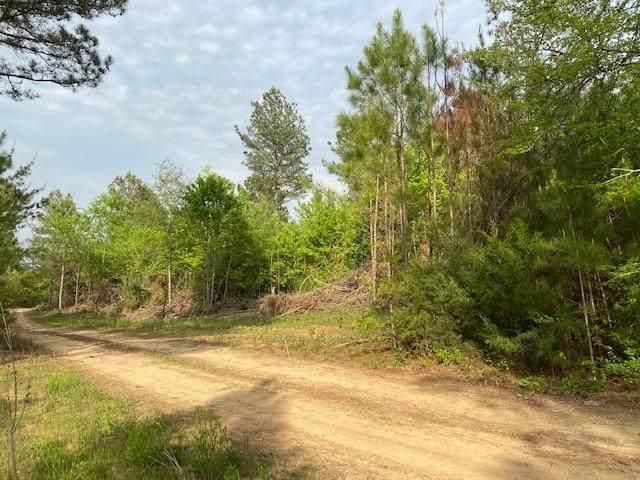 Tract 3 County Road 351, Niota, TN 37826 (#1150593) :: Billy Houston Group