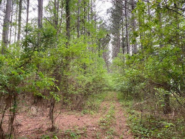 Tract 1 County Road 351, Niota, TN 37826 (#1150598) :: Billy Houston Group
