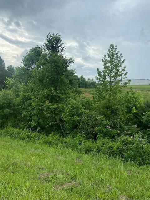 Highway 411 S, Madisonville, TN 37354 (#1155918) :: Catrina Foster Group