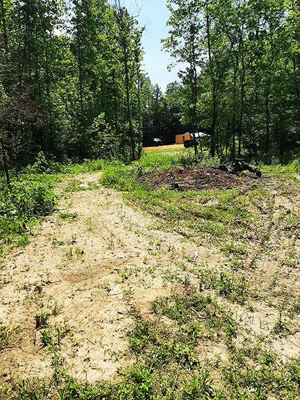 501 Lick Creek Road Rd - Photo 1