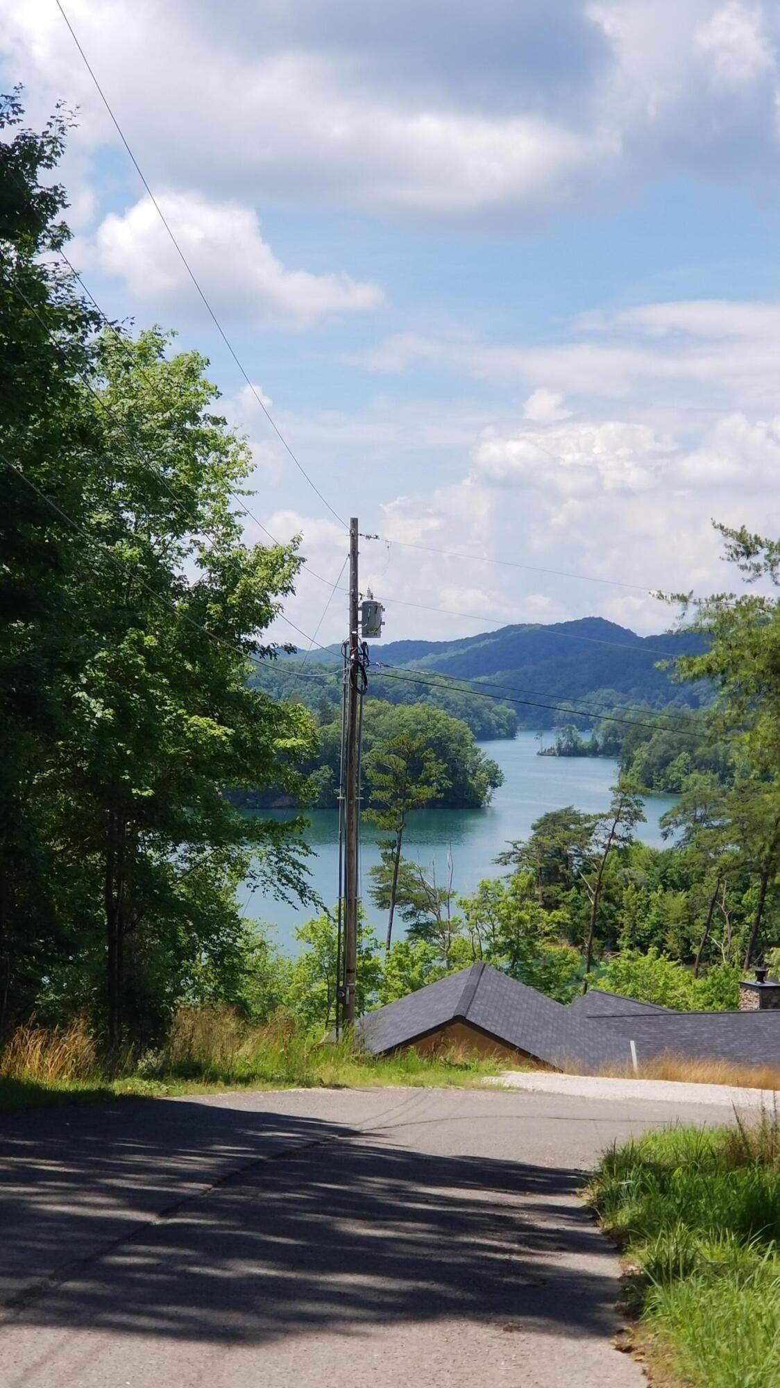 Lot 78 Scott Hollow Road - Photo 1