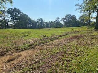 Stephens Circle, Madisonville, TN 37354 (#1161404) :: Catrina Foster Group