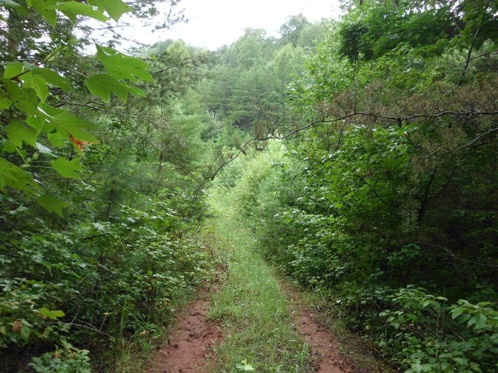 1002 County Road 480 - Photo 1