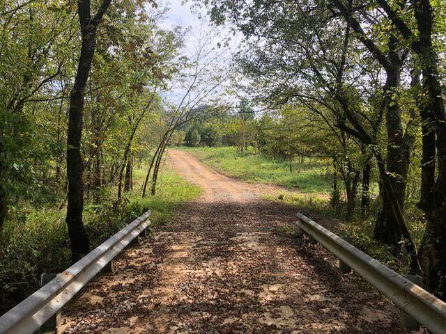 Tract 36 Pinhook  Road - Photo 1