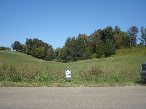 L 118 Indian Ridge Rd, Rutledge, TN 37861 (#783577) :: Billy Houston Group