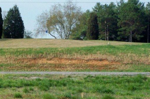 Okmulgee Circle, Loudon, TN 37774 (#822624) :: Billy Houston Group