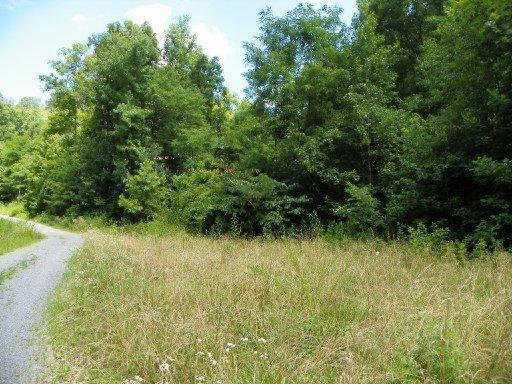 Lot 24 Windswept View Way, Sevierville, TN 37862 (#853856) :: Billy Houston Group