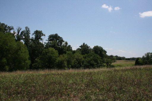 Highwick Circle, Farragut, TN 37934 (#896178) :: Billy Houston Group