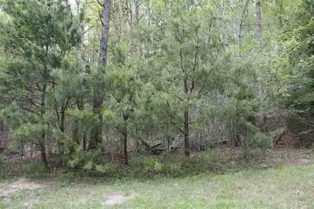 Lot 15 NW Stafford Avenue, Cleveland, TN 37312 (#935649) :: Venture Real Estate Services, Inc.
