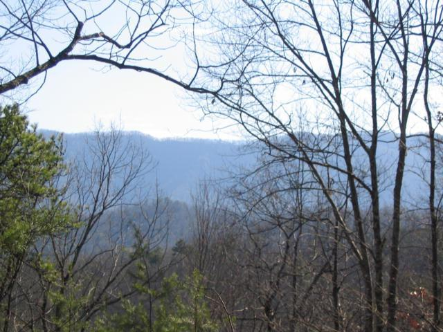 Cooper Rd, Vonore, TN 37885 (#937334) :: Shannon Foster Boline Group