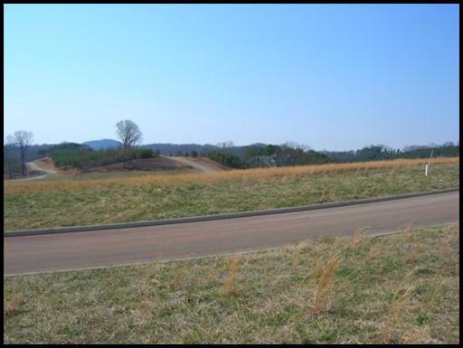 140 Hummingbird Drive, Vonore, TN 37885 (#954020) :: Shannon Foster Boline Group