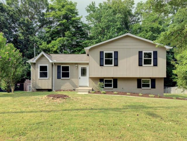 1652 Sundrop Drive, Knoxville, TN 37921 (#969492) :: Billy Houston Group