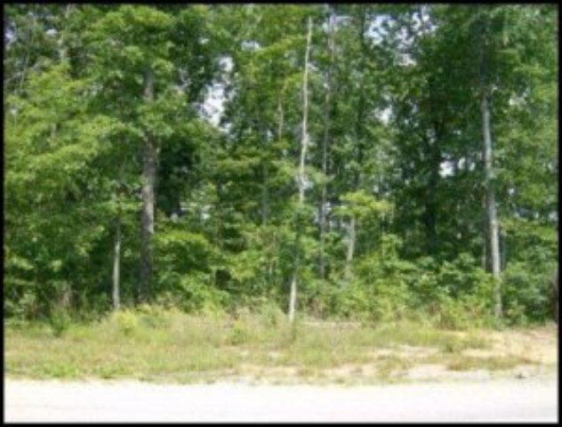 Red Oak Dr, Lot 265, Jamestown, TN 38556 (#995931) :: Shannon Foster Boline Group