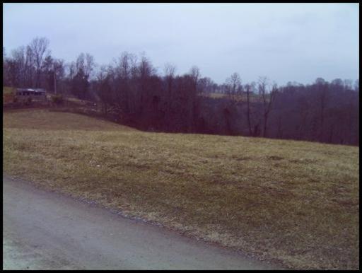 Sunset Hills Lane, New Tazewell, TN 37825 (#1016217) :: Billy Houston Group