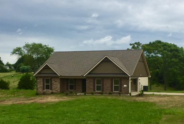 1414 Sally View Drive, Friendsville, TN 37737 (#1026846) :: Billy Houston Group