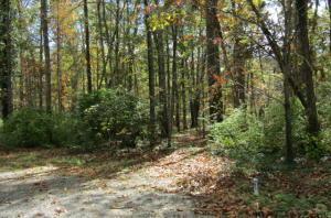 2004 Okmulgee Lane, Crossville, TN 38572 (#1029587) :: CENTURY 21 Legacy
