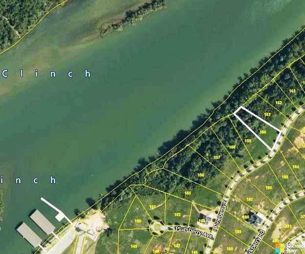164 Pineberry Rd Lot 160, Oak Ridge, TN 37830 (#1147240) :: Shannon Foster Boline Group