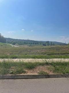 81 E Elderberry St, Oak Ridge, TN 37830 (#1161874) :: Shannon Foster Boline Group