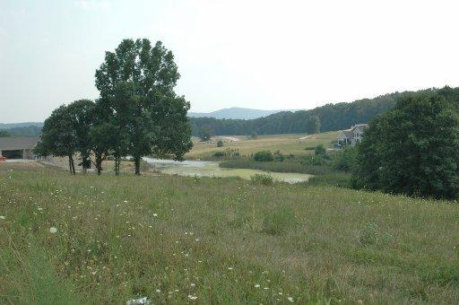 Lot 6 Keating, Crossville, TN 38572 (#735333) :: Billy Houston Group