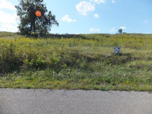 Lot 8 Holston Shores Drive, Rutledge, TN 37861 (#783547) :: Billy Houston Group