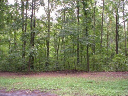 263 County Road 260, Niota, TN 37826 (#813772) :: Billy Houston Group