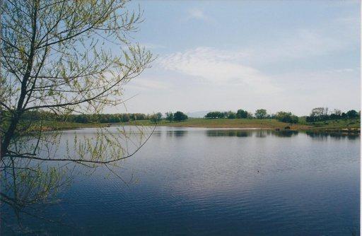 144 Deerwood Drive, Dandridge, TN 37725 (#851178) :: Billy Houston Group