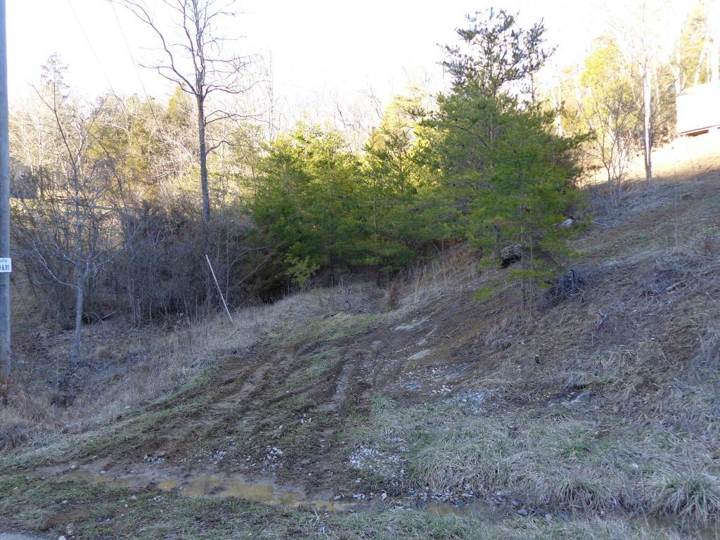 Lots 76-78 Hollow Springs Way - Photo 1