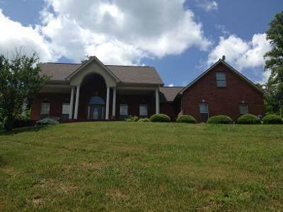 179 Remington Drive, Maynardville, TN 37807 (#1133803) :: Billy Houston Group