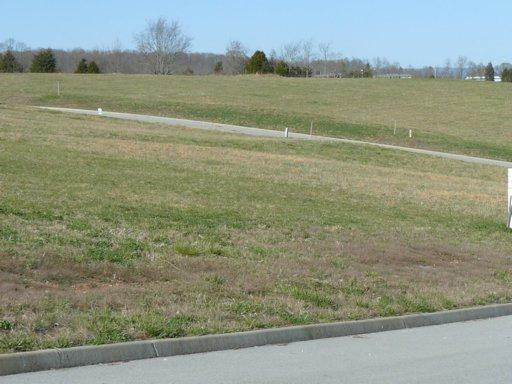 Lot 47 Dudley Lane, Tazewell, TN 37879 (#798600) :: Shannon Foster Boline Group