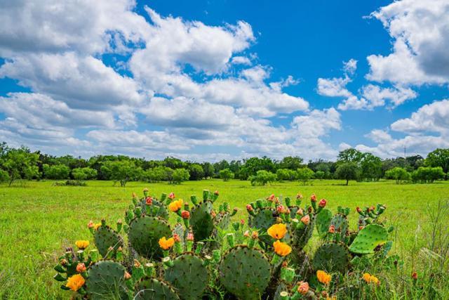 1085 Hollmig, Fredericksburg, TX 78624 (MLS #103888) :: The Glover Homes & Land Group