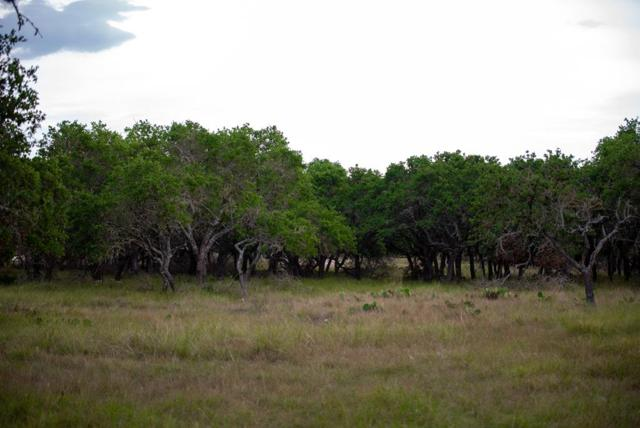 199 Sky Harbor, Mountain Home, TX 78058 (MLS #104700) :: The Glover Homes & Land Group