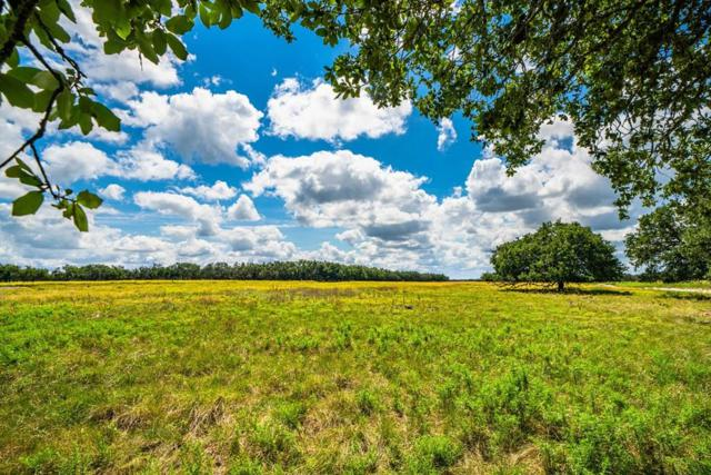 Tract 23 Hwy 290, Harper, TX 78631 (MLS #104796) :: The Glover Homes & Land Group