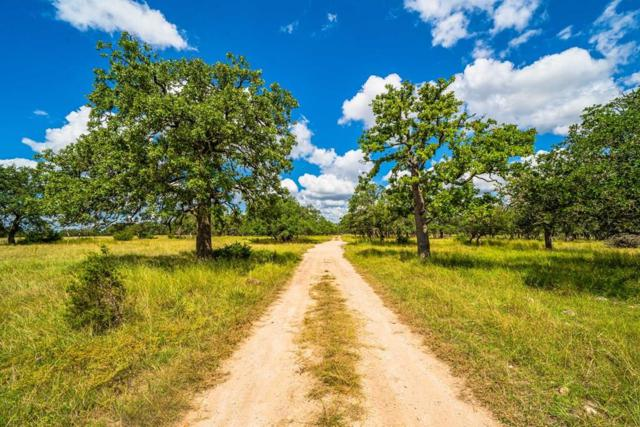 Tract 24 Hwy 290, Harper, TX 78631 (MLS #104797) :: The Glover Homes & Land Group
