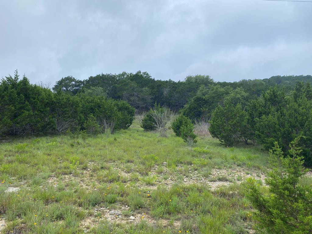 11 Scenic Valley Rd - Photo 1