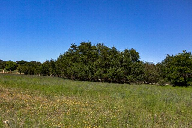 4225 Stone Creek Circle - Photo 1