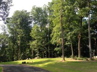 4 Alans Green #119, Lancaster, PA 17602 (MLS #210943) :: The Craig Hartranft Team, Berkshire Hathaway Homesale Realty