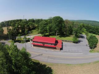 3275 State Route 72, Jonestown, PA 17038 (MLS #236581) :: The Craig Hartranft Team, Berkshire Hathaway Homesale Realty