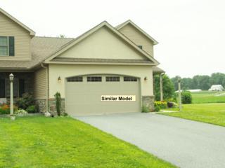 101 Anna Lane #1, Elizabethtown, PA 17022 (MLS #237906) :: The Craig Hartranft Team, Berkshire Hathaway Homesale Realty
