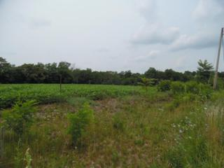 LOT 4 Stouchsburg Road, Mount Aetna, PA 19544 (MLS #239223) :: The Craig Hartranft Team, Berkshire Hathaway Homesale Realty