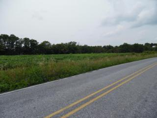 LOT 2 Stouchsburg Road, Mount Aetna, PA 19544 (MLS #239225) :: The Craig Hartranft Team, Berkshire Hathaway Homesale Realty