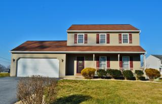 225 Lighthouse Drive, Jonestown, PA 17038 (MLS #247638) :: The Craig Hartranft Team, Berkshire Hathaway Homesale Realty