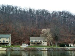 229 Murphys Hollow Road, Wrightsville, PA 17368 (MLS #253092) :: The Craig Hartranft Team, Berkshire Hathaway Homesale Realty