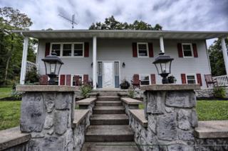 235 Engel Lane, Mifflintown, PA 17059 (MLS #255064) :: The Craig Hartranft Team, Berkshire Hathaway Homesale Realty